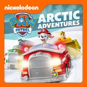 PAW Patrol, Arctic Adventures