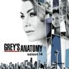 Grey's Anatomy - April sauvée des eaux  artwork