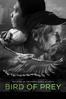 Eric Liner - Bird of Prey  artwork