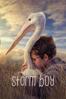 Shawn Seet - Storm Boy  artwork