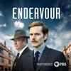 Endeavour - Pylon  artwork
