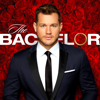 The Bachelor - 2307 artwork