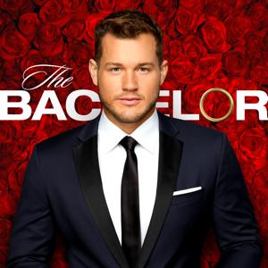 The Bachelor, Season 23