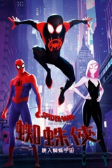 蜘蛛俠:跳入蜘蛛宇宙  Spider-Man: Into the Spider-verse
