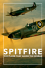 Anthony Palmer & David Fairhead - SPITFIRE: The Plane That Saved the World  artwork