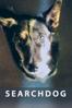 M Healey Jamiel - Searchdog  artwork