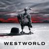 Westworld - Voyage dans la Nuit  artwork