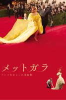 アンドリュー・ロッシ - メットガラ ドレスをまとった美術館 (字幕版) artwork