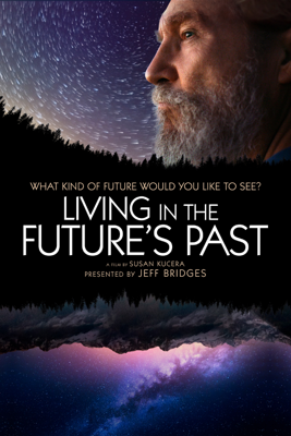 Susan Kucera - Living in the Future's Past  artwork