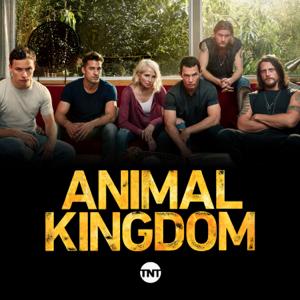 Animal Kingdom, Season 3
