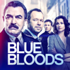 Blue Bloods - Blues  artwork