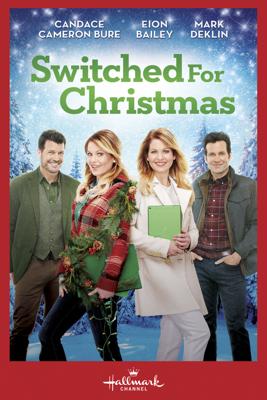Switched for Christmas - Lee Friedlander