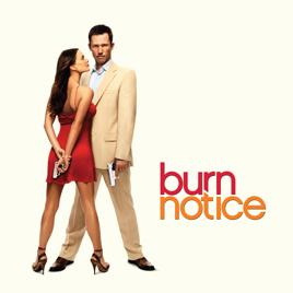 burn notice staffel 8