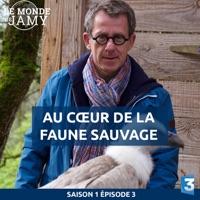 Télécharger Le monde de Jamy : Au cœur de la faune sauvage Episode 1