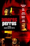 Amores Perros wiki, synopsis