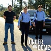 Télécharger Under the Dome, Season 2 Episode 13