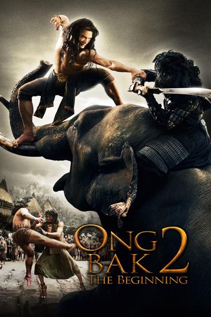 Ong-bak 2 2008 Hindi Dubbed BRRip 300mb 480p Free Download
