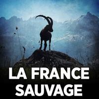 Télécharger La France sauvage Episode 1