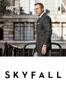Sam Mendes - Skyfall  artwork