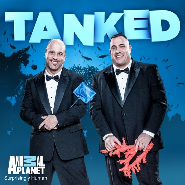 Tanked Tv Show Cast