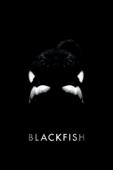 Blackfish (字幕版)