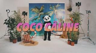 Coco Câline (Lyric Video)