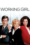 Working Girl wiki, synopsis