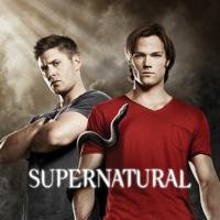 Supernatural - Supernatural, Season 6 artwork
