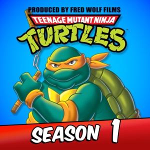 Teenage Mutant Ninja Turtles , Season 1