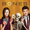 Bones, Season 3 - Synopsis and Reviews
