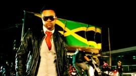 Fly High Shaggy & Gary Nesta Pine Pop Music Video 2009 New Songs Albums Artists Singles Videos Musicians Remixes Image