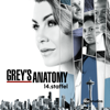 Grey's Anatomy - Eiskalt  artwork