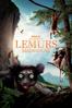 David Douglas - IMAX: Island of Lemurs - Madagascar  artwork