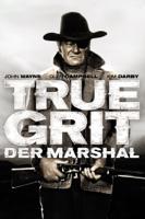 Henry Hathaway - Der Marshal artwork