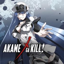 Akame ga Kill, Collection 2 (English Dubbed Version)